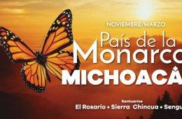 Go Visit the Sanctuaries of the Monarch Butterflies