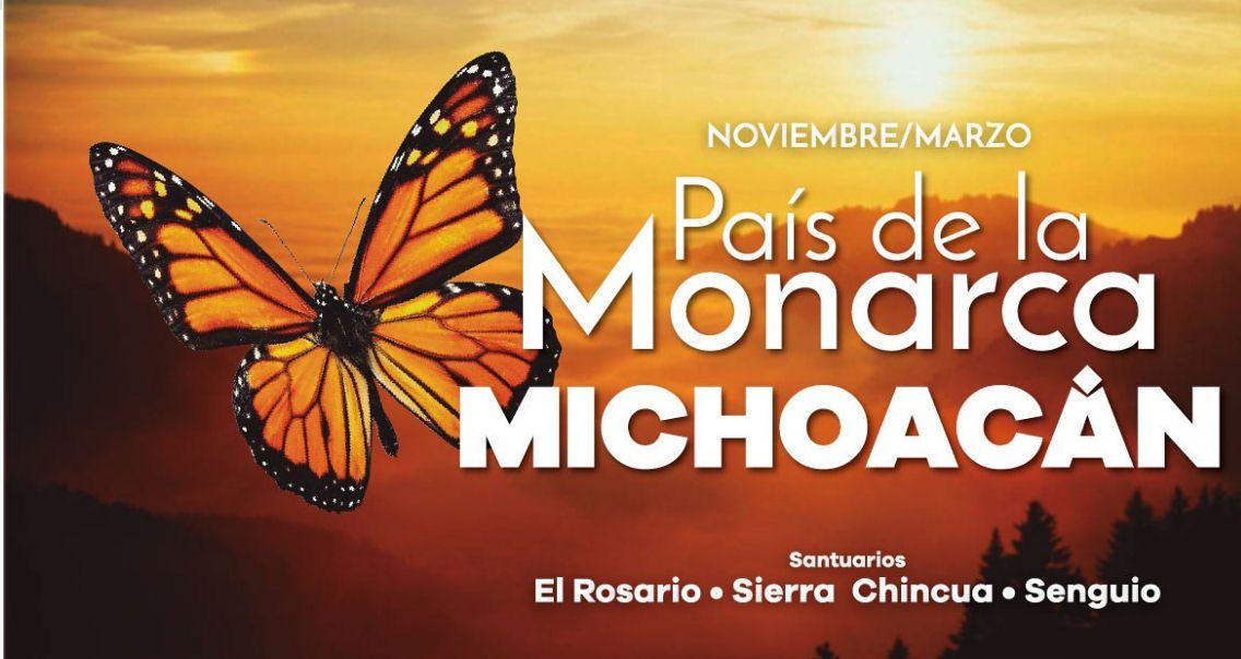 Visit the Monarch Butterfly Sanctuaries