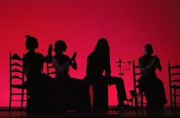 Flamenco: Montaje para el escenario