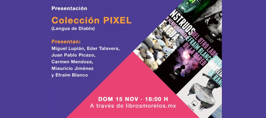 Presentación de proyecto Colección PIXEL
