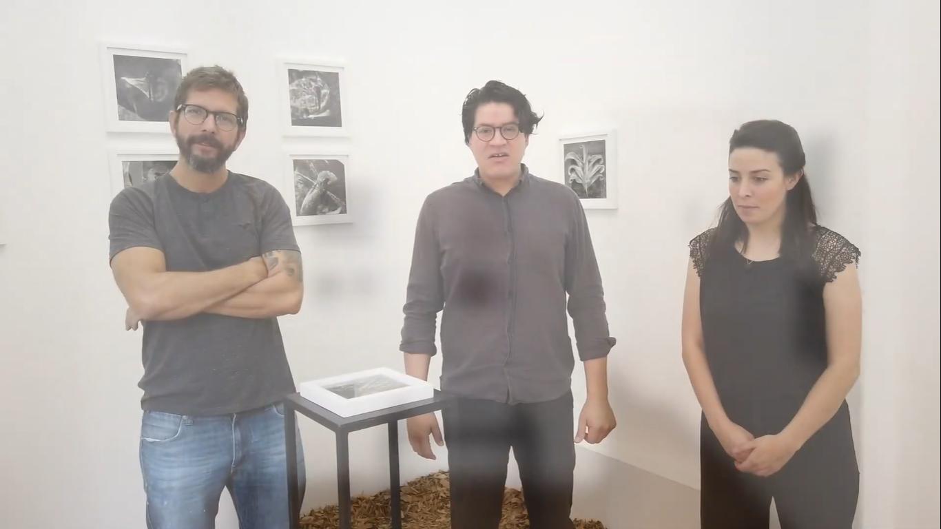 Exposición: Naturaleza perpetua e inmóvil de Luis Gordoa