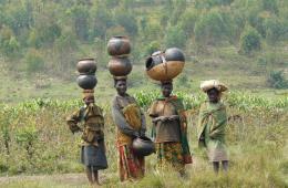 La intolerancia en el Continente Africano: estudios de ca...