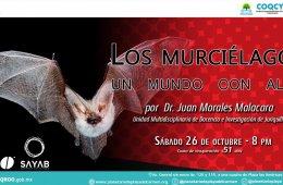 Conferencia: Los murciélagos, un mundo con alas.