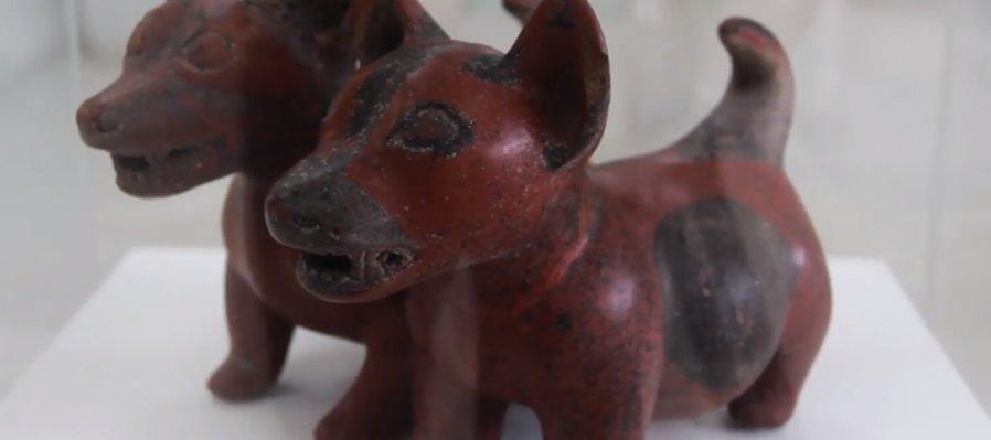 Museo de las Culturas de Occidente María Ahumada de Gómez