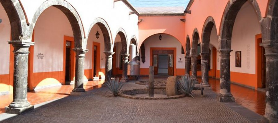 A Tour Across the National Museum of the Tequila
