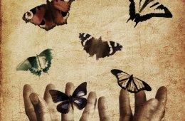 Cerrando ciclos: soltando el medio