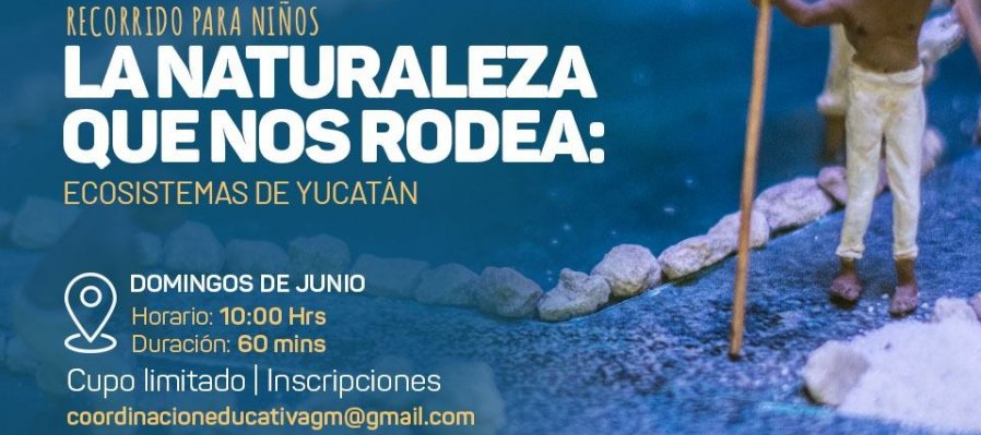 The Nature around Us: Ecosystems of Yucatán