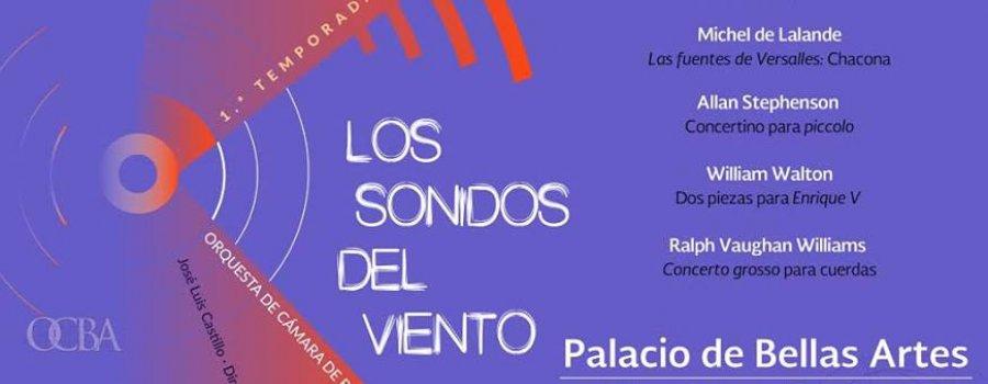 Orquesta de Cámara de Bellas Artes. Programa 1