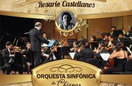 Anniversary of the Birth of Rosario Castellanos