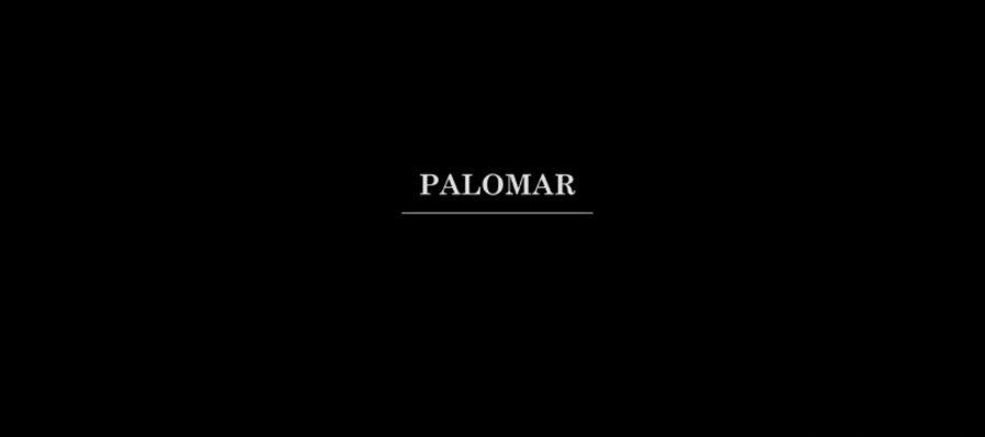 Película: Palomar