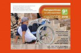 Perspectivas de la Discapacidad