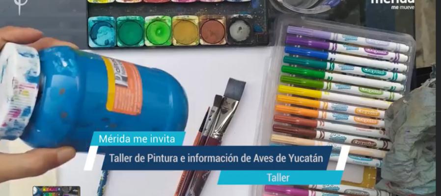 Taller de Pintura e información de Aves de Yucatán