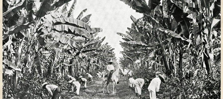 February 1, 1918: The Agrarian Reform Makes Progress