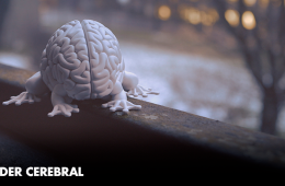 The Brain Power