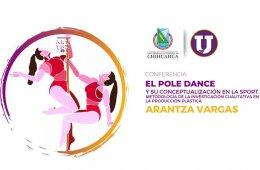 El pole dance y su conceptualización en la sport