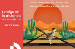 Nacho Pata | Presentaciones video grabadas