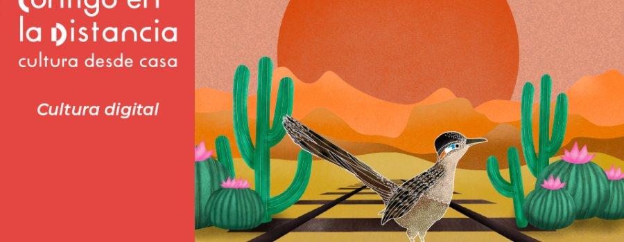 Bajo las estrellas del desierto | Talleres video grabados