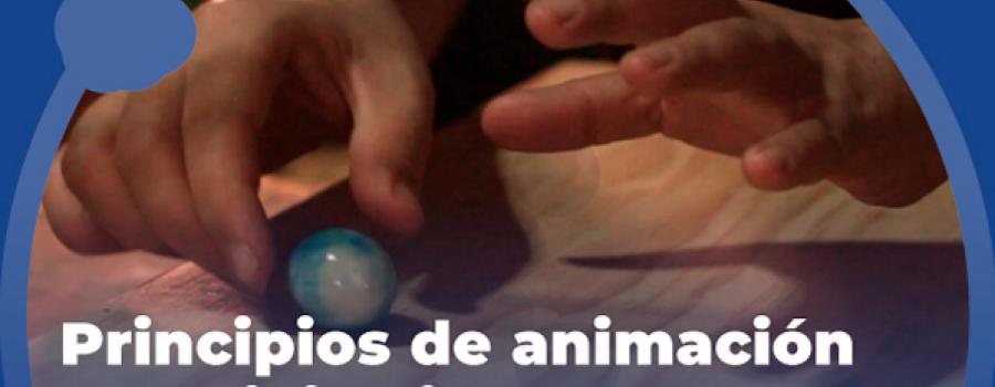Principios de la animación: Pixilación 5. Dibujo sólido.