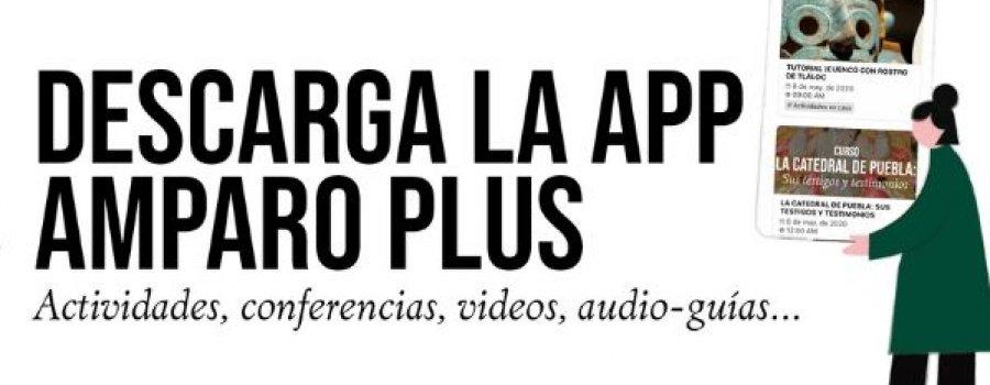 App | Amparo Plus
