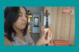 ¿Cómo armar tu violín?