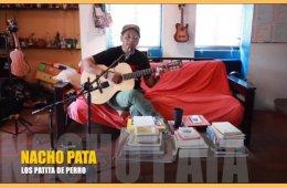 Nacho Pata. Concierto