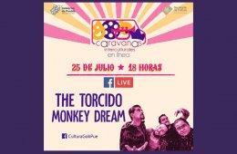 The Torcido Monkey Dream