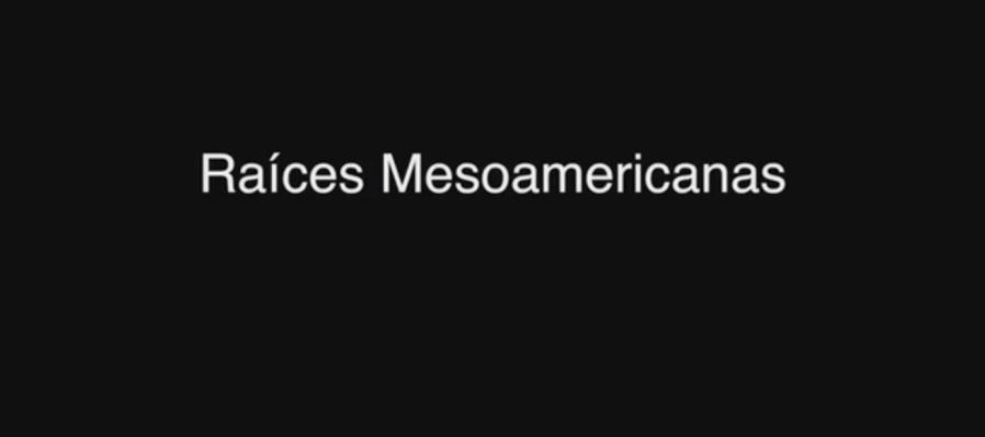 Raíces Mesoamericanas