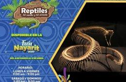Reptiles del pasado y del presente