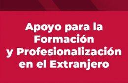Resultados Apoyo para la Formación y Profesionalización...