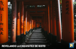 Revealing the Exquisiteness of Kyoto