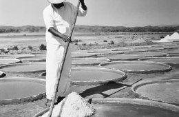 Sal de la Tierra: Las salinas de Pinotepa Nacional