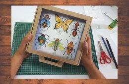 Caja entomológica