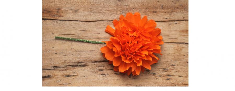 Taller de flor de cempasúchitl en papel