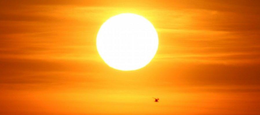 Una Mirada al Sol.