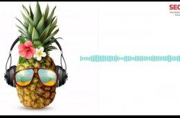 Experiencia sonora