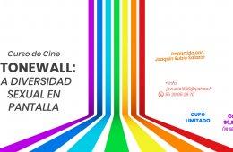 Curso De Cine - Stonewall La Diversidad Sexual En Pantall...