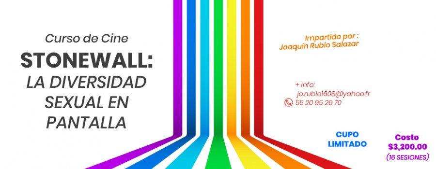Curso De Cine - Stonewall La Diversidad Sexual En Pantalla