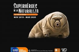Superhéroes de la Naturaleza. La Vida al Límite