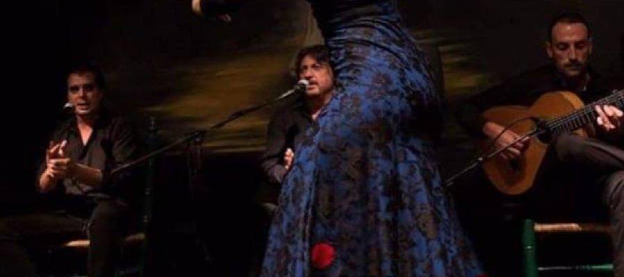 Noche de Tablao Flamenco
