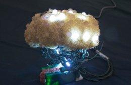 Arduino y bichos lumínicos