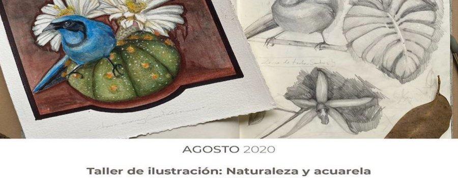 Taller de ilustración: Naturaleza y acuarela