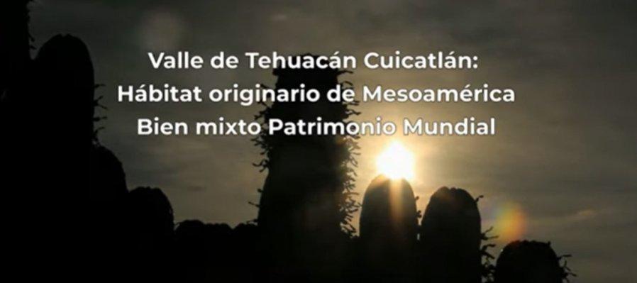 Valle de Tehuacán Cuicatlán, hábitat originario de Mesoamérica