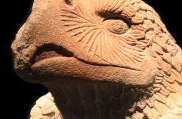 Visita guiada temática: Arqueología histórica