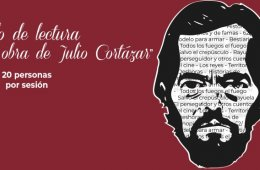 Around Julio Cortázar's Work