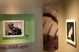 Tina Modotti and the Photographic Avant Garde in Mexico