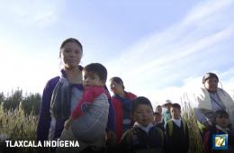Tlaxcala indígena