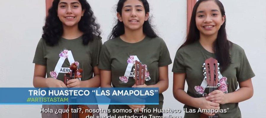 Las Amapolas: Trío Huasteco