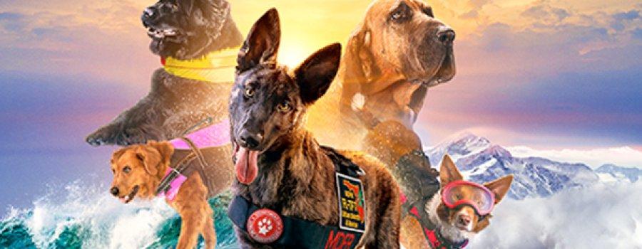 Perros Superpoderosos