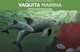 Instalación fotográfica para honrar a la Vaquita Marina