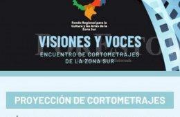 Visiones y voces, cortometrajes de la zona sur